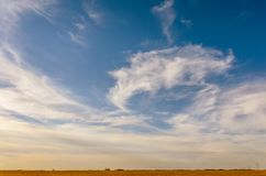 Blue sky with white, fluffy, tender cirrus clouds, yellow field, Stock Photo