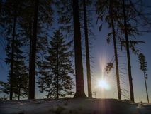 Blue sky in winter time royalty free stock photo