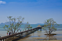 Blue sky and Wooden bridge into the sea Royalty Free Stock Photos