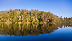 Blue Sky Woodland Lake Reflections. Royalty Free Stock Photo