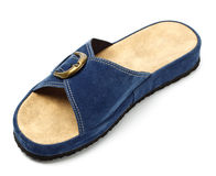 Blue slipper Stock Photo