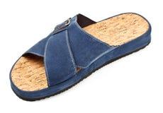 Blue slipper Stock Image