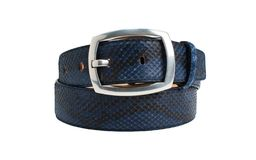 Blue snake leather belt with big buckle on white background. Photographed in studio for sale royalty free stock images