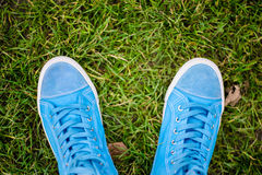Blue Sneakers. Lying on green grass royalty free stock photos
