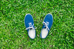 Blue sneakers on green grass Royalty Free Stock Photography