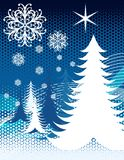 Blue Snow Christmas Trees Stock Photos