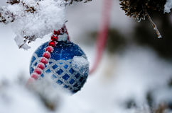 Blue Snow Covered Christmas Ornament Hanging on an Outdoor Tree Royalty Free Stock Images