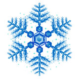 Blue Snow Flakes. Vector Illustration of Blue Snow Flakes Royalty Free Stock Photo