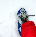 Blue snow shoes for walking on snow Royalty Free Stock Image