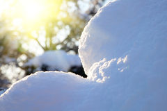 Blue snowdrift in a forest with sunbeam Royalty Free Stock Photo