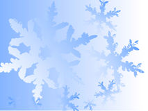 Blue snowflake background. A collection of bluish, illustrated snowflakes on a light blue background Royalty Free Stock Photos