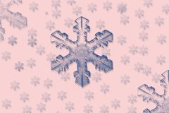 Blue snowflakes. Pink background, blue snowflakes, computer generated Vector Illustration