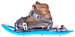 Blue Snowshoes Stock Photo
