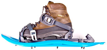 Blue Snowshoes Royalty Free Stock Photography