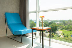 Blue sofa and flower in relax time. Royalty Free Stock Photo