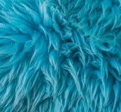 Blue soft animal fur modern macro closeup texture background royalty free stock image