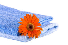 Blue soft fluffy towels, Flower Royalty Free Stock Image