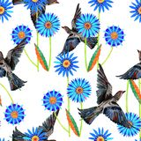 Blue space flowers and colored bird on a white background. Blue space flowers colored bird handmade white background seamless pattern watercolor color pencil Royalty Free Stock Photography