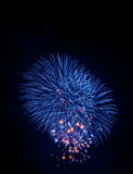 Blue sparkle firework Stock Photography
