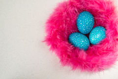Blue speckled Easter eggs in a nest of pink fur on a white backg Stock Photography