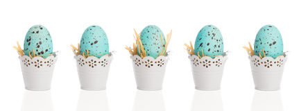Blue Speckled Eggs. Blue speckled Easter eggs in pretty white buckets Stock Photos