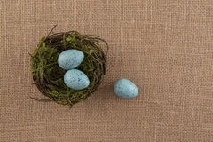 Blue Speckled Eggs and Nest Royalty Free Stock Image