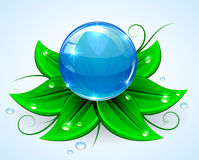 Blue sphere. On green leaves with drops, illustration Stock Photos