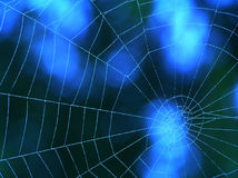 Blue spider web Royalty Free Stock Images