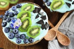 Blue Spirulina and Berry Smoothie Bowl with Blueberries and Kiwi stock image