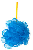 Blue sponge shower isolated on white background Stock Image