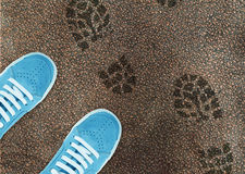Blue sport shoe on street. And shoes print around Stock Images
