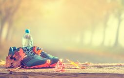 Blue sport shoes and water laid on a wooden board. stock images