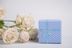 Blue spotted gift box and creamy roses on white background Royalty Free Stock Photo