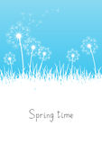 Blue spring background Royalty Free Stock Photography