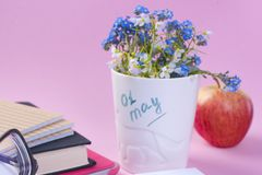 Blue spring flowers in a white glass. Pink background. Place for text. Books and an apple. Card . Vertical photo. Copy space royalty free stock image