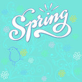Blue Spring Royalty Free Stock Images