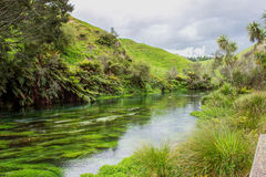 Blue spring. A natural spring near Hamilton, spring water was blue looks like a jade belt across valley Royalty Free Stock Photo