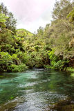 Blue spring. A natural spring near Hamilton, spring water was blue looks like a jade belt across valley Stock Images
