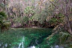 Blue Spring State Park, Florida, USA Stock Photo