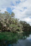Blue Spring State Park, Florida, USA Stock Image