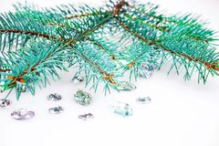 Blue spruce branch with crystals for decoration. Royalty Free Stock Image