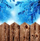 Blue spruce branches and wood fence Royalty Free Stock Images
