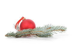 Blue spruce twig with christmas ball Stock Photography