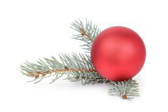 Blue spruce twig with christmas ball Royalty Free Stock Photo
