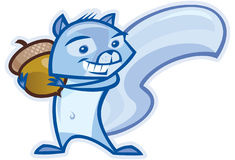 Blue Squirrel Royalty Free Stock Images