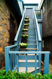 Blue Stairs Stock Photos