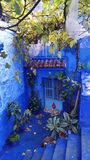 Charming small courtyard in the blue city of Chefchaouen, Morocco stock image