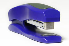 Blue Stapeler stock photos