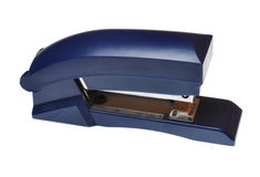 Blue stapler. Isolated on white background Stock Photo