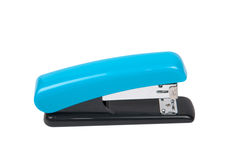 Blue stapler Stock Photography